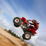 BMS Bearings - ATV Sports